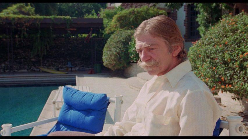 John Cassavetes Love Streams Seymour Cassel